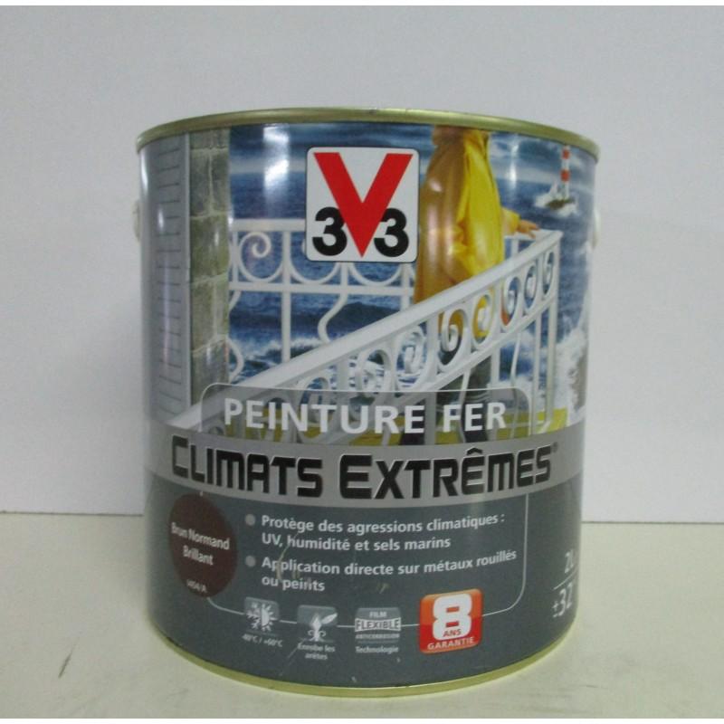 Peinture climats extrêmes fer V33 2L